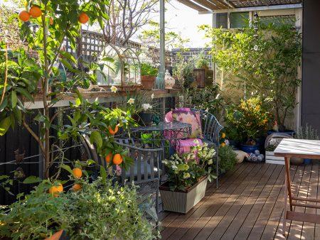 Balcony Gardens Melbourne for Bespoke Designs for Unique Garden Spaces - Balcony Gardens by DEEPDALE